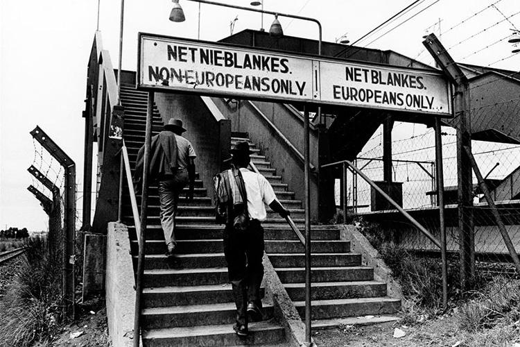 Sudafrica 1981 Quell Accoglienza Oltre L Apartheid Io