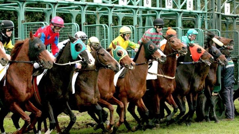 La filosofia del controstarter io gioco pulito for Giochi di cavalli da corsa